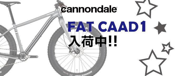 キャノンデール2020年「FAT CAAD1」入荷!